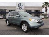 2010 Opal Sage Metallic Honda CR-V EX-L #89566570