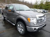 2014 Sterling Grey Ford F150 XLT SuperCrew 4x4 #89566760