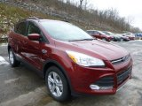 2014 Sunset Ford Escape SE 2.0L EcoBoost 4WD #89566751
