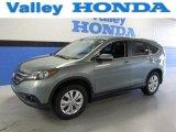 2012 Opal Sage Metallic Honda CR-V EX 4WD #89566582
