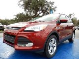 2014 Sunset Ford Escape SE 1.6L EcoBoost #89607464