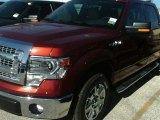 2014 Sunset Ford F150 XLT SuperCrew #89629666