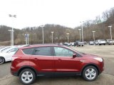 2014 Sunset Ford Escape SE 1.6L EcoBoost 4WD #89636995