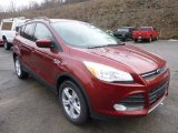 2014 Sunset Ford Escape SE 1.6L EcoBoost 4WD #89673866