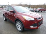2014 Sunset Ford Escape SE 1.6L EcoBoost 4WD #89673861