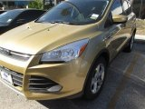 2014 Karat Gold Ford Escape SE 1.6L EcoBoost #89713895