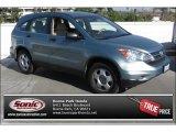 2011 Opal Sage Metallic Honda CR-V LX #89762043