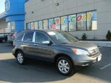 2011 Polished Metal Metallic Honda CR-V SE 4WD #89817501
