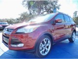 2014 Sunset Ford Escape Titanium 2.0L EcoBoost #89817068