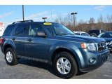 2010 Steel Blue Metallic Ford Escape XLT #89817135