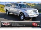 2005 Silver Sky Metallic Toyota Tundra SR5 Double Cab 4x4 #89858030