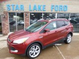 2014 Sunset Ford Escape Titanium 2.0L EcoBoost 4WD #89882702