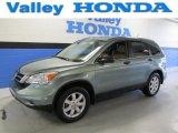 2011 Opal Sage Metallic Honda CR-V SE 4WD #89882324