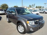 2011 Sterling Grey Metallic Ford Escape XLT V6 #89947054