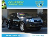 2013 Tuxedo Black Ford Expedition XLT #89947110