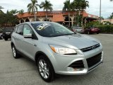 2013 Ingot Silver Metallic Ford Escape SEL 2.0L EcoBoost #89946878