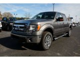 2014 Sterling Grey Ford F150 XLT SuperCrew 4x4 #89980967