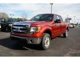 2014 Sunset Ford F150 XLT SuperCab #89980963