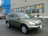 2008 Green Tea Metallic Honda CR-V EX-L 4WD #90068507