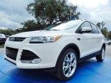 2014 White Platinum Ford Escape Titanium 1.6L EcoBoost #90124938