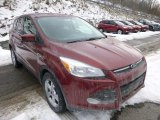 2014 Sunset Ford Escape SE 1.6L EcoBoost #90185620