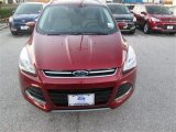2014 Sunset Ford Escape Titanium 1.6L EcoBoost #90185453