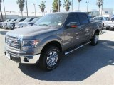 2014 Sterling Grey Ford F150 XLT SuperCrew 4x4 #90239714
