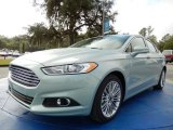 2014 Ice Storm Ford Fusion Hybrid SE #90297650