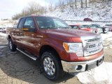 2014 Sunset Ford F150 XLT SuperCab 4x4 #90408621