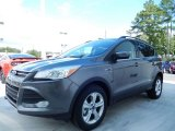 2014 Sterling Gray Ford Escape SE 2.0L EcoBoost #90444876