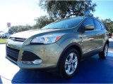 2013 Ginger Ale Metallic Ford Escape SE 2.0L EcoBoost #90494080