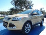 2014 Karat Gold Ford Escape Titanium 2.0L EcoBoost #90494066