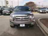 2014 Sterling Grey Ford F150 XLT SuperCrew 4x4 #90493983