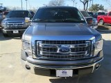 2014 Sterling Grey Ford F150 XLT SuperCrew #90561365
