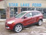2014 Sunset Ford Escape Titanium 2.0L EcoBoost 4WD #90561721