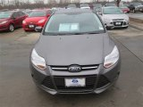 2014 Sterling Gray Ford Focus SE Sedan #90561347