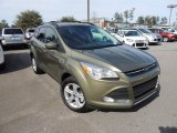 2013 Ginger Ale Metallic Ford Escape SE 2.0L EcoBoost #90594595