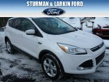2014 White Platinum Ford Escape SE 2.0L EcoBoost 4WD #90621814