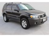 2006 Black Ford Escape Hybrid #90645454