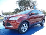 2014 Sunset Ford Escape SE 1.6L EcoBoost #90677544
