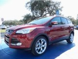2014 Ruby Red Ford Escape Titanium 1.6L EcoBoost #90677543