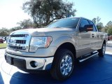 2014 Pale Adobe Ford F150 XLT SuperCab #90677528