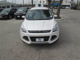 2014 White Platinum Ford Escape SE 2.0L EcoBoost #90745544