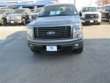 2014 Sterling Grey Ford F150 STX SuperCrew #90745537