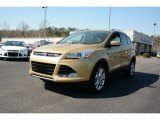 2014 Karat Gold Ford Escape Titanium 1.6L EcoBoost #90745878