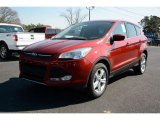 2014 Sunset Ford Escape SE 1.6L EcoBoost #90745875