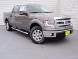 2014 Sterling Grey Ford F150 XLT SuperCrew #90745757