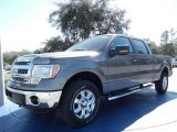 2014 Sterling Grey Ford F150 XLT SuperCrew 4x4 #90790202