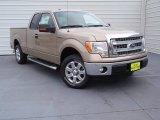 2014 Pale Adobe Ford F150 XLT SuperCab #90882053