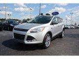 2014 Ingot Silver Ford Escape SE 2.0L EcoBoost #90882138
